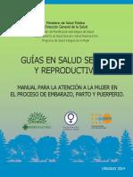 2014 Manual Atención Embarazo Parto y Puerperio