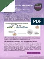 1. ELISPOT assay citocine