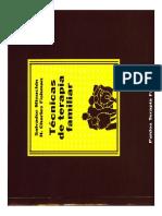 31149743 Libro Salvador Minuchin Tecnicas de Terapia Familiar