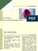 El_Nucle