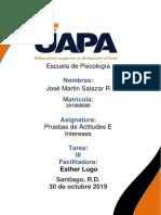 PMA Jose Martin Salazar R Pruebas de Actitudes E Intereses 3