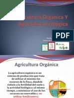 Agricultura Orgánica Y Agricultura Ecológica