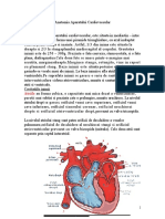 anatomia aparatului cardiovascular MEDICINA INTERNA.pdf