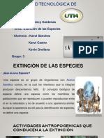 Extincion de las especies.pptx