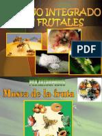 Mip en Frutales - Jpc