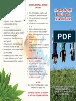 consumul de droguri pliant.pdf