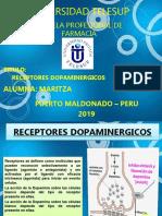 RECEPTORES DOPAMINERGICOS