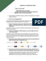 Taller Metabolismo de Lípidos II
