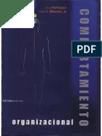 Comportamiento_Organizacional_-_10ma_Edi.pdf
