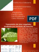 Virologia Paper