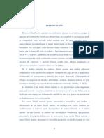 Introducción, Cap,i,II,III, Bibliografía y Anexos