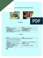 ASEMANARI SI DEOSEBIRI INTRE REPTILE SI PESTI.doc
