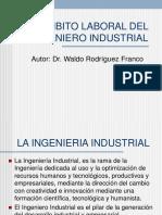 Ambito Laboral Del Ingeniero Industrial