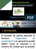 2. Tamaño de Planta