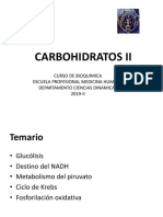 Carbohidratos II