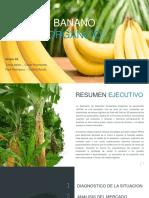 TAF Grupo 3 - Banano Orgánico (1)