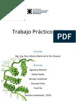 Trabajo Practico N°1 - Problemas Ambientales. Indicadores de Desempeño Ambiental