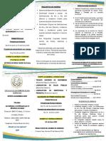POLISAL SILVIA FERRUFINO OFERTA ACADEMICA 2020