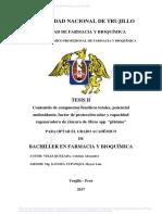 Veliz Quezada Cristian Alexander.pdf