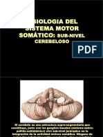 Fisologia Sist Motor Somat Cerebelo