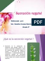 Secreción+vegetal+8