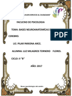 Bases-neurobiológica-del-cerebro.docx