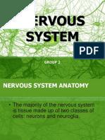 Nervous System. Ppt