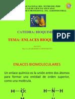 enlaces-bioquimicos-2015