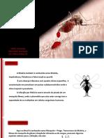 5851445_Malria.pdf
