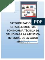 Normas Tecnicas Del Minsa Para La Salud Materna (1)