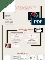 Desarrollo cognoscitivo en la adultez media. 2.pptx