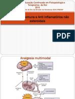 aula-de-anti-inflamatórios-não-esteroidais_05_10_2016.pdf