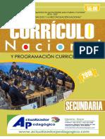 Curricula Secundaria 2019
