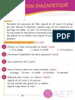 diagno-5AEP-1.pdf