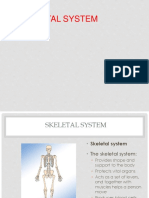 skeletal lecture notes.pdf