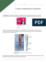 Safenectomía_ en Qué Consiste, Complicaciones y Recuperación – Lifeder
