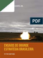Resumo Ensaios Estrategia Brasileira Acc6
