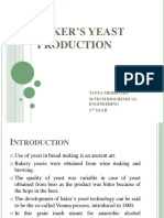 Baker's Yeast Production