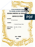 290840374-Informe-Examen-de-Orina.docx