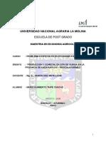 Plan de Actividades en Quinua