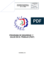 PROGRAMA DE SEGURIDAD Y  SALUD EN EL TRABAJO  PSST