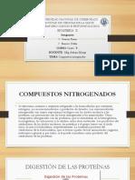 Exposicion Bioquimica II