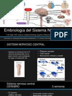 Embriología del Sistema Nervioso.pptx