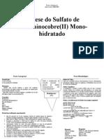 Relatorio Sintese Sulfato re Mono Hid Rat Ado Ano2