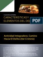 caracteristicas y elementos