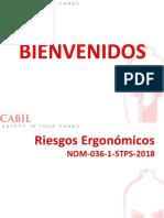 La Ergomonia NOM-036