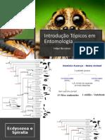 MInicurso Tópicos em Entomologia UFSB 2019