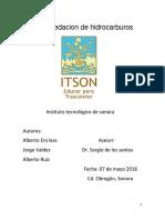 ENSAYO DE BIORREMEDIACION
