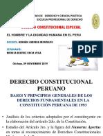 La Dignidada Humana - Peru - Monica