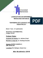 Tp3_enf. Cuidados Criticos Pediatricos - Barria Sandra e.